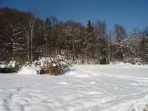 Snowy park Tivoli