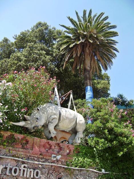 A rhyno in Portofino