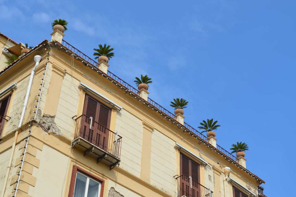 Blue skies and palm trees everywhere