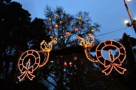 Holiday lights, City Hall park, Vienna
