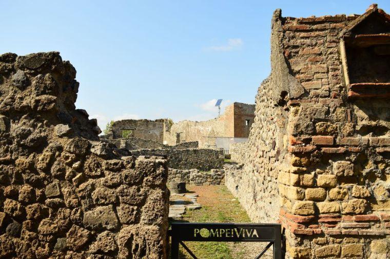 Pompei viva
