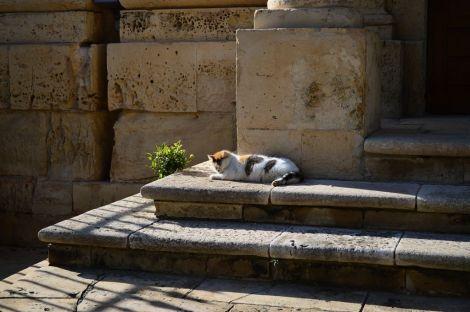 Detail of Valletta