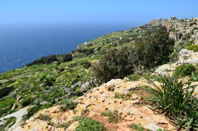 Dingli Cliffs, pt. 7