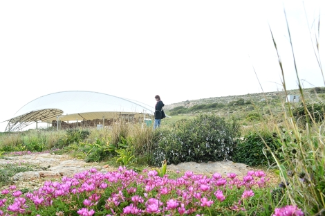 Walk to Mnajdra