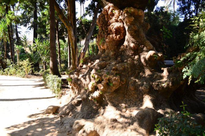 Alcazar gardens, pt. 2