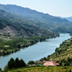 The reversed story of Porto wine